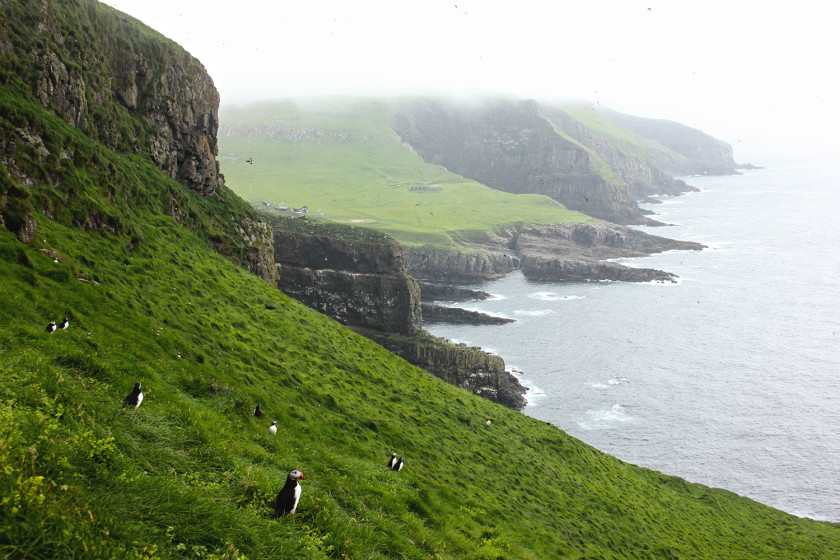 Travel Guide to the Faroe Islands – Everything You Need To Know