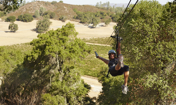 Vineyard and Zipline Trends Collide at the Pinot Express