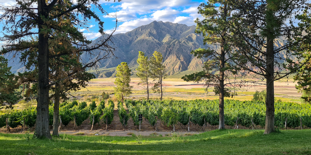 Wine Touring in Argentina & Chile, South America